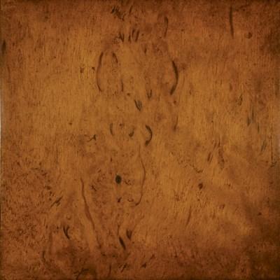 Birch Massup Burl Veneer