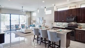 The Capri&nbsp;<div>Fort Myers<br>by Zuckerman Homes</div>